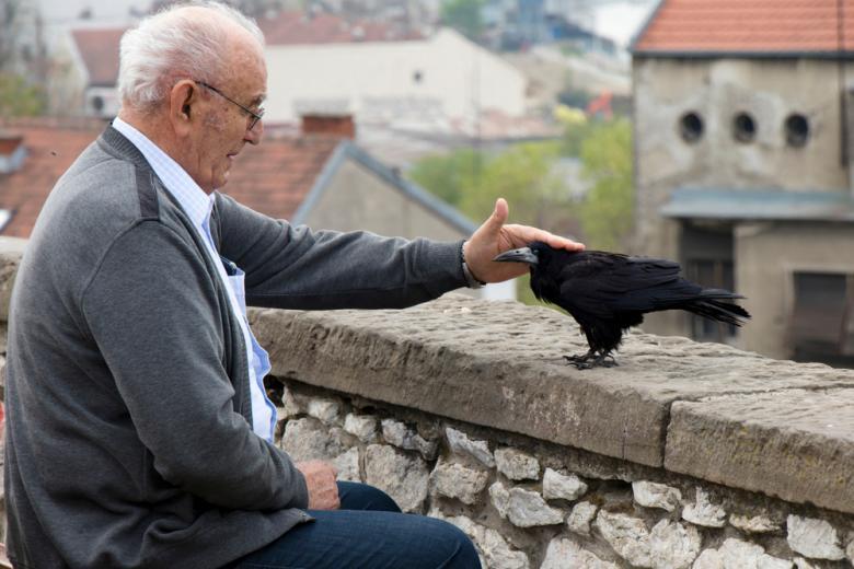 пожилой мужчина сидит и гладит ворона фото