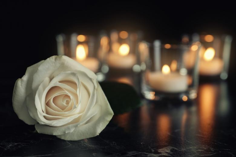 Белая роза на фоне горящих свечей фото