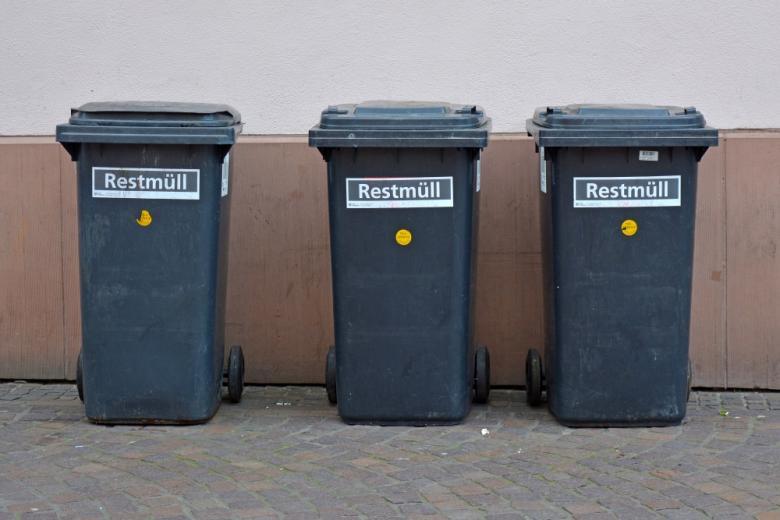 черные контейнеры Restmüll в Германии. Фото: Firn / shutterstock.com