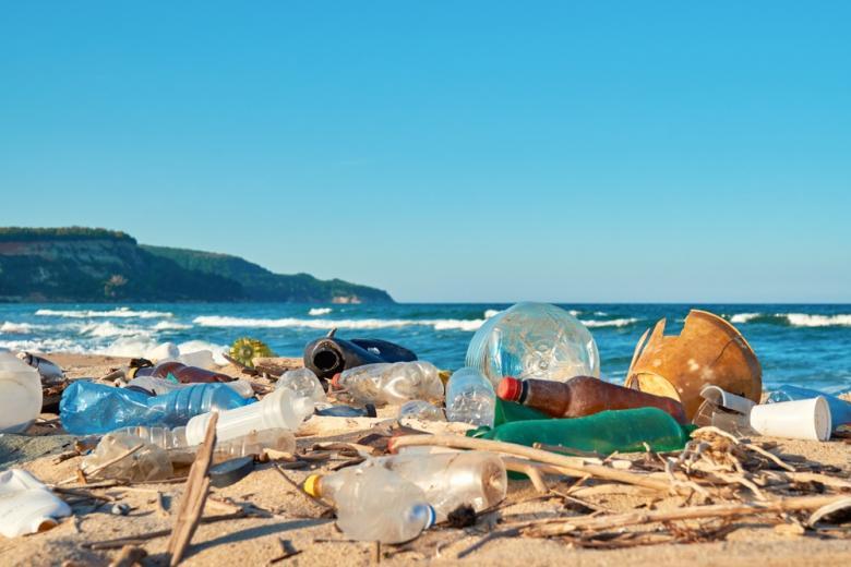 пластиковый мусор на берегу океана фото