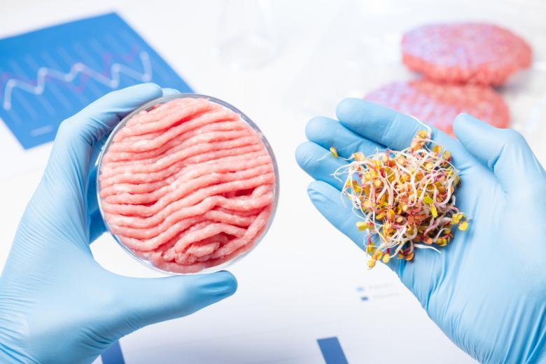 Создание суррогатного мяса из растений фото