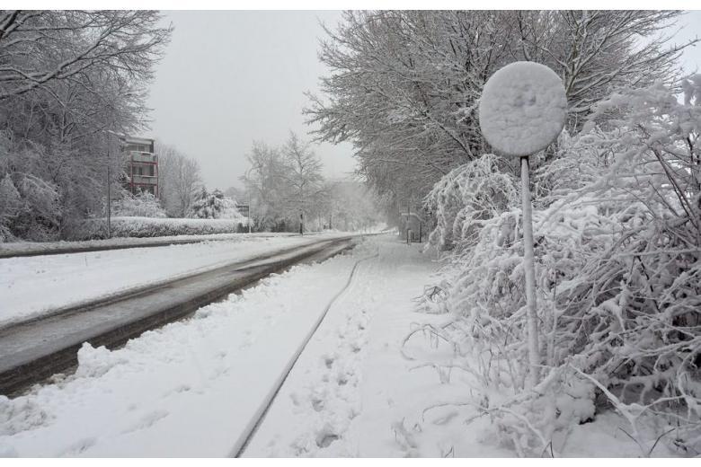 снегопады в Германии фото