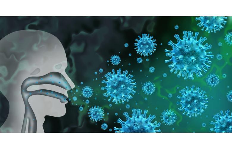 Как появился коронавирус