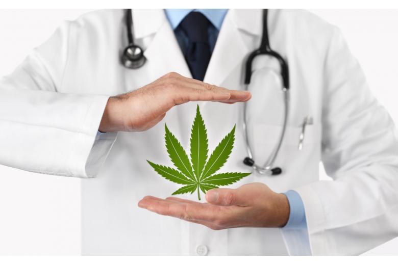 Легализация марихуаны в Германии