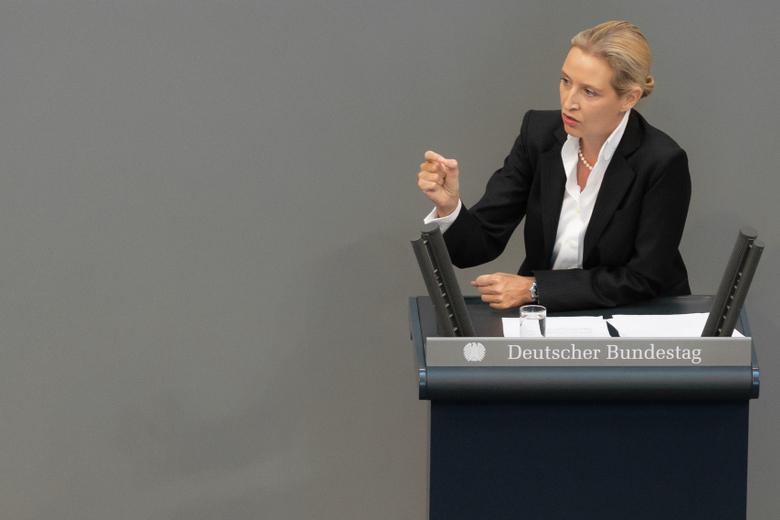 Альтернатива для Германии Фото: Автор: photocosmos1 / shutterstock.com
