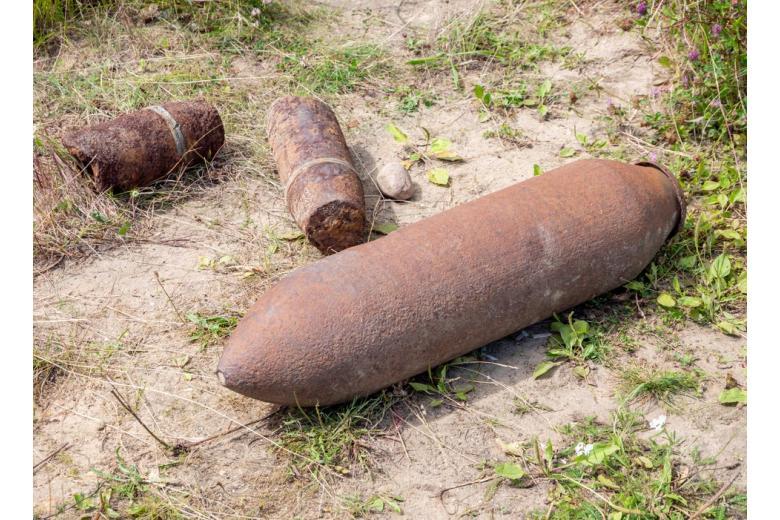 bomby-vremen-vtoroj-mirovoj-vojny / Фото: Animaflora PicsStock/shutterstock.com