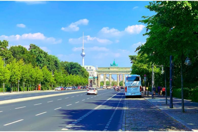 парки Германии / Foto: Ivan Perez Abreu / unsplash.com