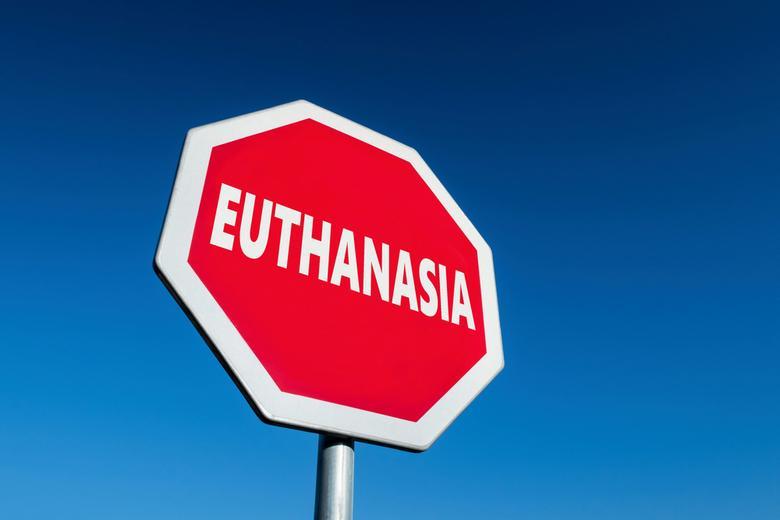 Правила эвтаназии в Германии Фото: Автор: Mino Surkala / shutterstock.com