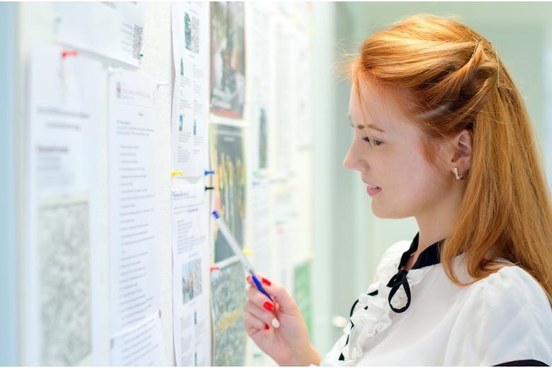 Работа для студента может быть в разных сферах: всё зависит от навыков соискателя и требований работодателя