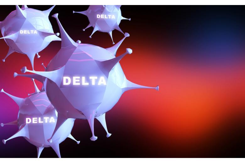 вариант Delta / MIA Studio / shutterstock.com