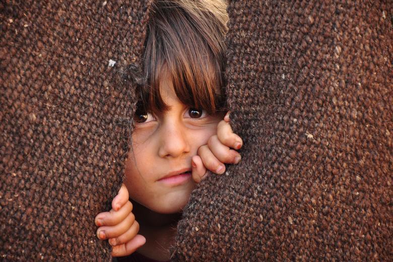 Лагеря беженцев Фото: Автор: Alfa Net / shutterstock.com