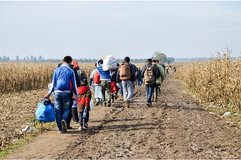 кампания по приему беженцев