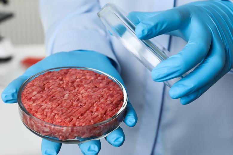 Завод искусственного мяса Автор: New Africa / shutterstock.com