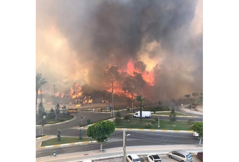 Анталья лесные пожары / Фото: TC İbrahim Öcal / /twitter.com