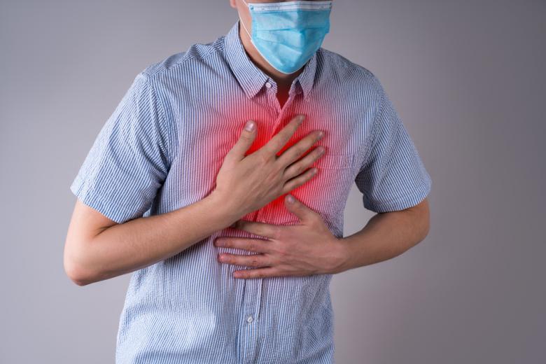 сердце и лёгкие COVID / Фото: staras / shutterstock.com