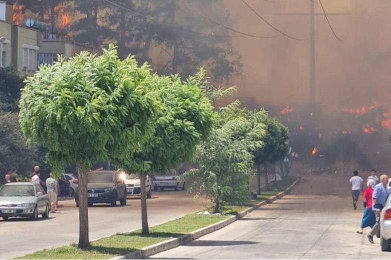Пожары в Анталии. Фото: twitter.com/yaseminn1919
