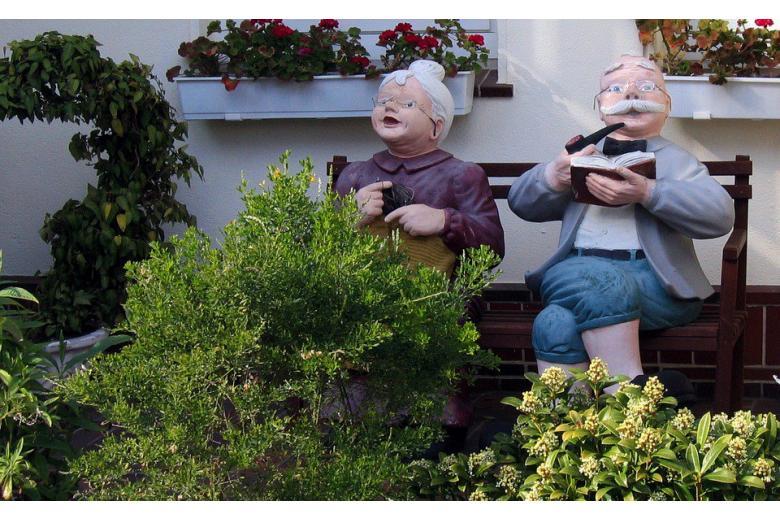 законопроект о пенсионной реформе фото