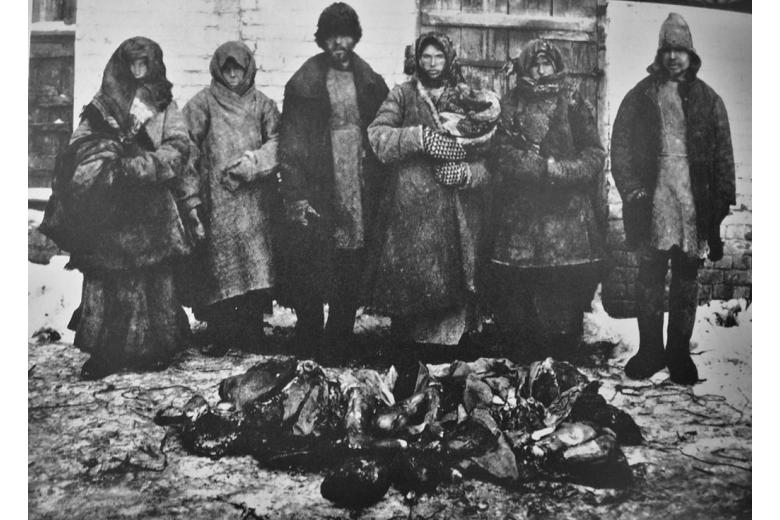 Медицинская помощь иностранных благотворительных организаций в период голода в Поволжье в 1921–1922 годах фото 1